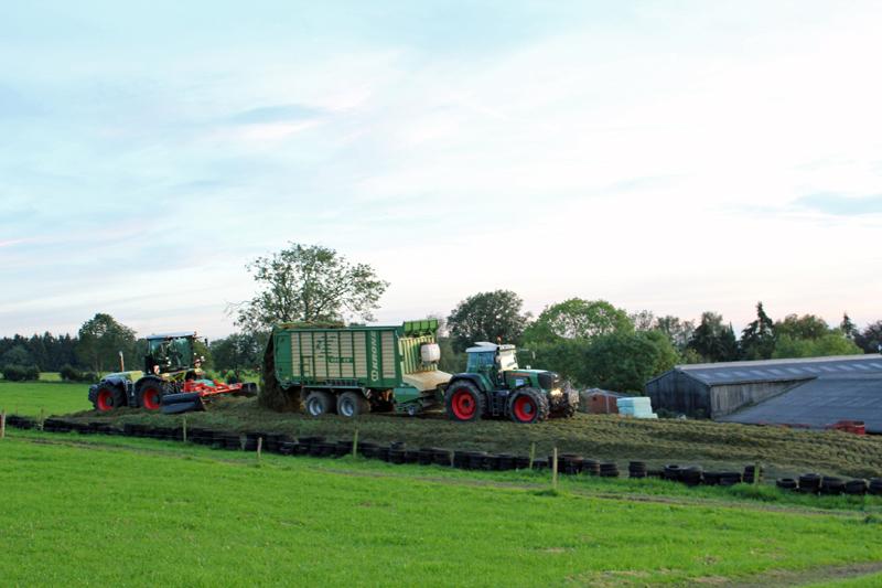 Herkingrade-Landwirtschaft