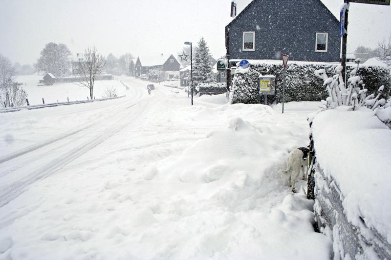 Herkingrade-Winter01