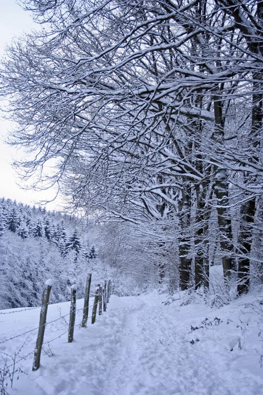 Herkingrade-Winter04